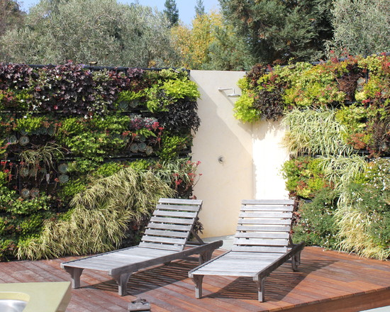 Living Wall Los Altos Hills Ca (San Francisco)